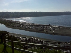 The View From Camano Island